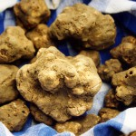 84th International Fair of the White Truffle of Alba