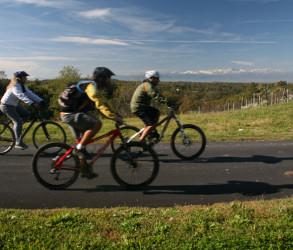 Mountain bike et trekking à Alba, Langhe et Roero