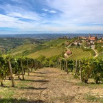 Piedmont in the Lonely Planet's best places in Europe 2015